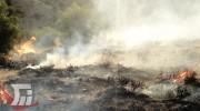 مهار آتشسوزی «سفیدکوه» خرمآباد